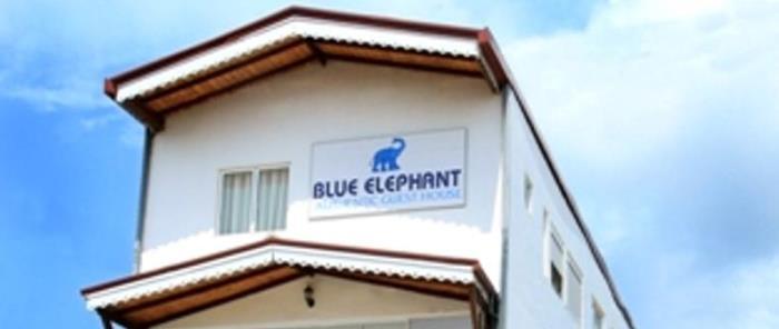 thumbnails blue elephant tourist guesthouse