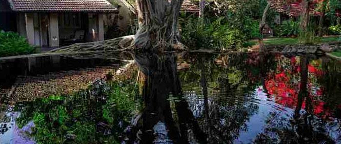 thumbnails sigiriya village